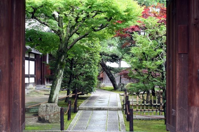 tofukuji1.JPG